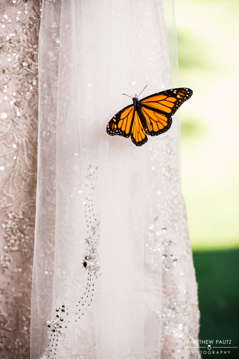Silver Fork Winery Wedding Photos | Monarch butterfly